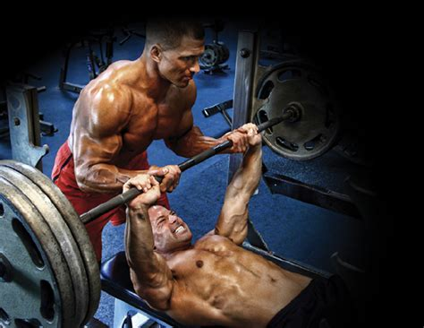 pec tear bench press top 5 exercises not to do muscle insider