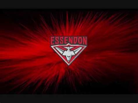 theme songs afl afl theme song essendon bombers football club youtube