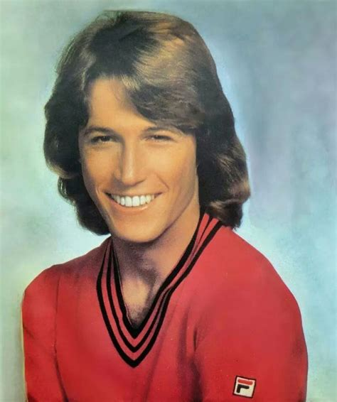 what is up with gibbs hair 70s andy gibb s feathered hair crush on andy gibb fila