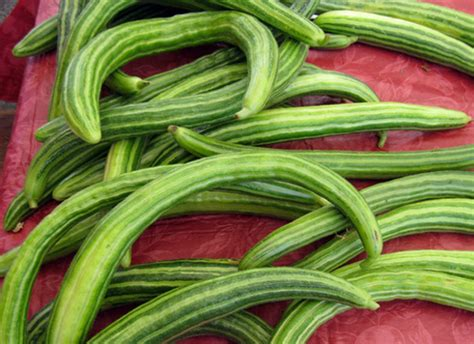 seedless cucumbers the varieties to look out for huffpost