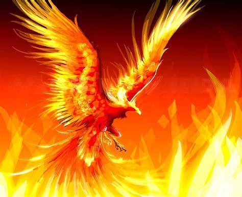 20 phoenix tattoo designs for women