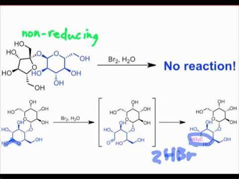 carbohydrates versus sugar reducing versus non reducing sugars