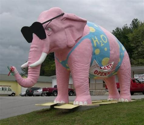 ericas elephant tennesee odd attractions pink elephant 2 cookeville tennessee s big move odd