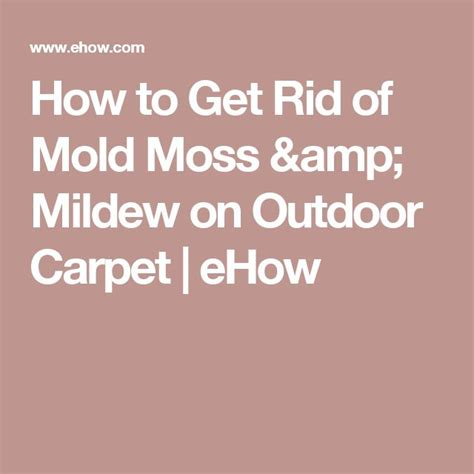 how to get rid of moss on patio stones the 25 best outdoor carpet ideas on grass carpet outdoor dinner and