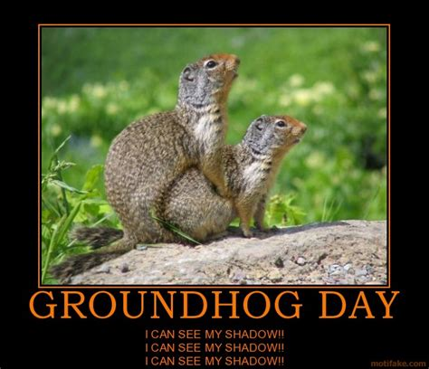 groundhog day buddhism inspirational quotes with images of groundhog quotesgram