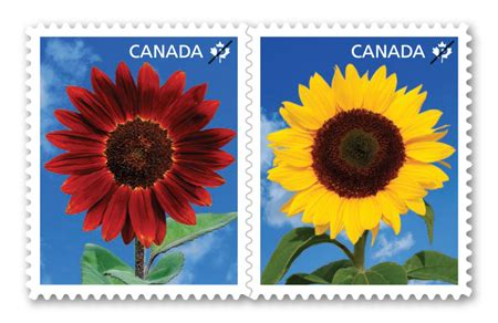 canada post stamps to europe