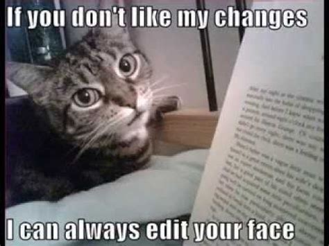 Editor Meme - funny cat pictures with captions youtube