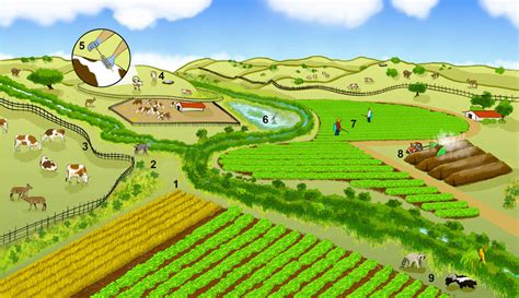 Agricultural Finance From Crops To Land Water And Ebook E Book clearing habitat surrounding farm fields fails to reduce pathogens berkeley news