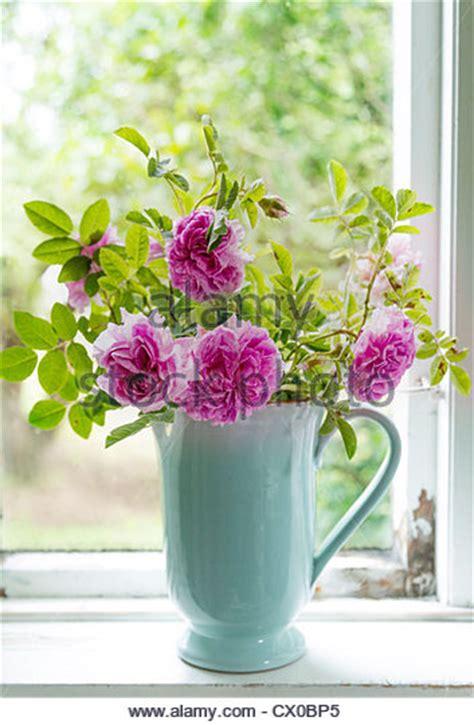 Windowsill Flower Garden Flowers In Vase On Window Sill Stock Photos Flowers In