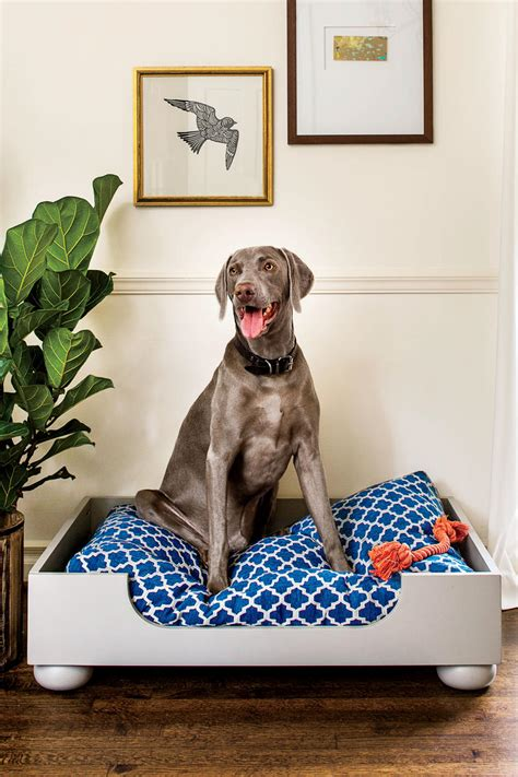 cheap n easy dog bed diy easy diy dog bed diying to be domestic dog beds and costumes