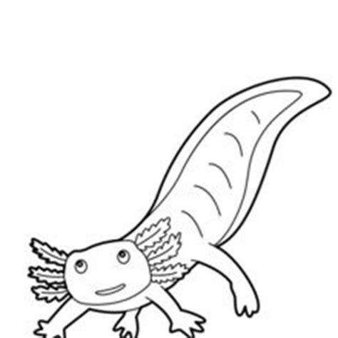 Axolotl Coloring Page by Axolotl Coloring Page Coloring Coloring Pages