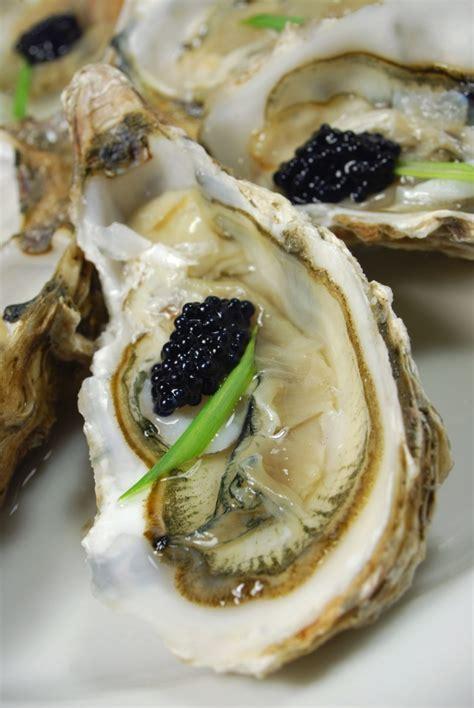 cucinare ostriche tartine ostriche e caviale l idea per preparare e