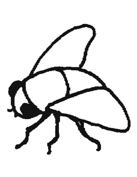 fly printable coloring pages