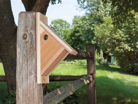 Chickadee House Plans Make A Chickadee Nesting Box Empress Of Dirt