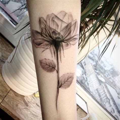 open rose tattoo 40 exquisite xray floral designs amazing ideas