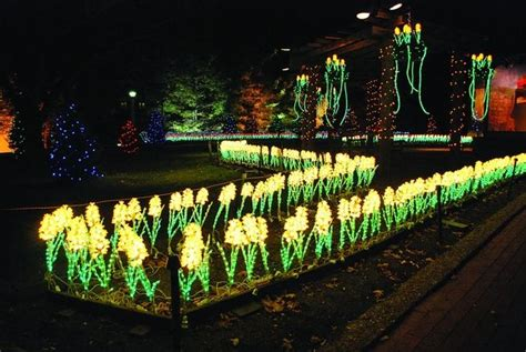 the lights at oglebay wv 38 best oglebay park images on pinterest west virginia