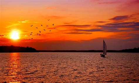 sunset sailing birds sweden boat nature ultra  hd