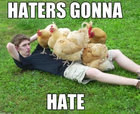 30 very funniest chicken meme pictures and photos