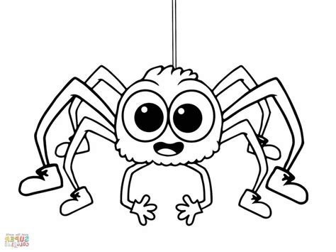 spider coloring pages carolina wolf page grig3 org