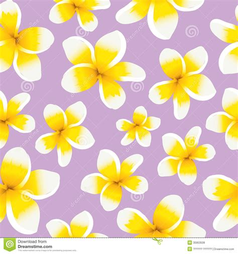 pattern purple and yellow floral background seamless pattern yellow plumeria royalty