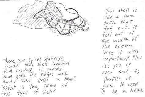 poem sketches the poem farm shell teeth the private eye