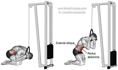 kneeling cable crunch exercises exercise cable workout cable crunch