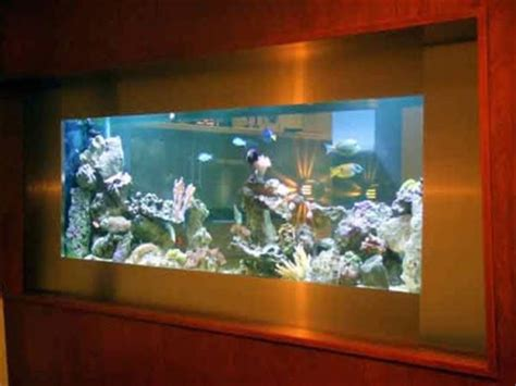 50 beautiful fish aquarium designs