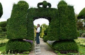 levens hall topiary garden begins annual 6 month trimming of trees and hedges daily mail online