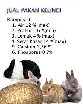 Harga Pakan Kelinci Skr kelinci wong kito jual pelet atau pakan kelinci di palembang