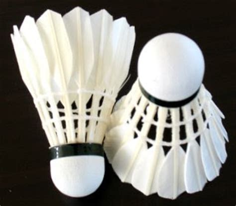 Raket Bulutangkis Wagi A S T 10 alat yang digunakan dalam bermain bulutangkis olah tubuh