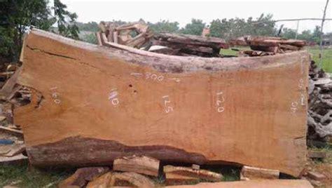 Kalung Cukil Kayu Jati Dan Kayu Sonokeling kayu sonokeling sawo jati tua dan bengkirai untuk bokken mana yang paling cocok kaskus