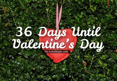 how many days till valentines 36 days until s day pictures photos and images