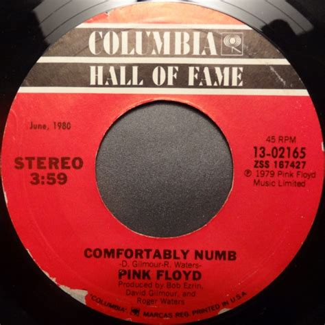 who wrote comfortably numb pink floyd run like hell comfortably numb vinyl at
