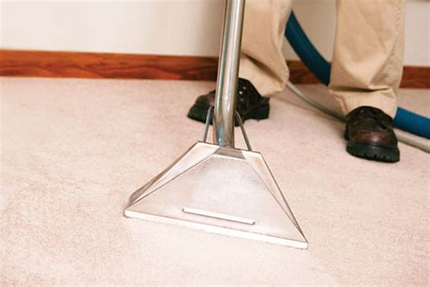 rite rug corporate office dun rite carpet upholstery cleaning in macomb mi coupons to saveon home improvement and