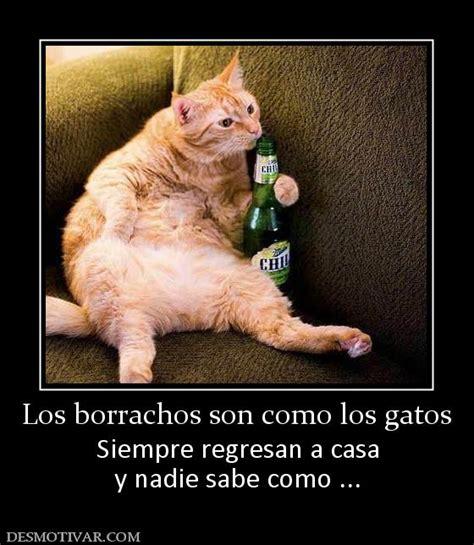 imagenes comicas borrachos desmotivaciones los borrachos son como los gatos siempre