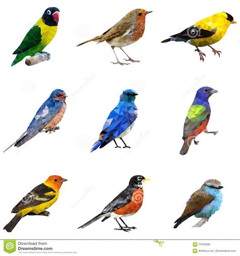 different type of birds stock vector image of icons