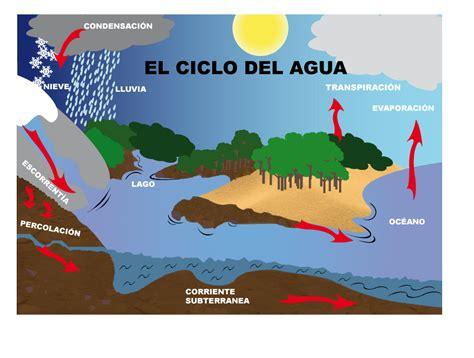 el ciclo del agua para ninos ciclo de agua thinglink
