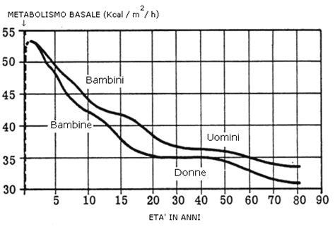 alimenti aumentano il metabolismo basale metabolismo basale formula per calcolo