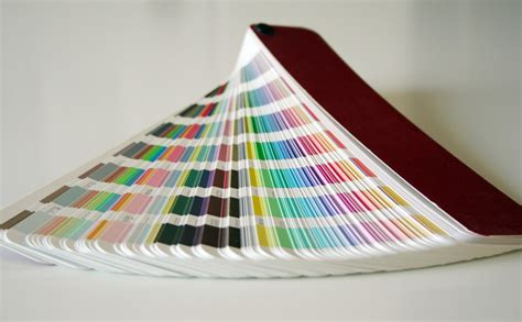 picking the paint color