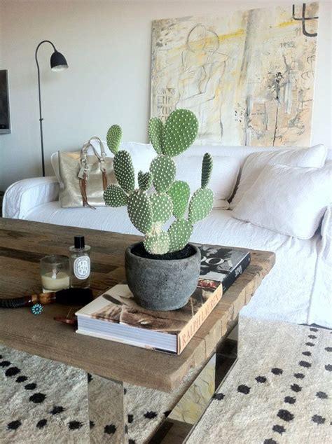 cactus home decor 17 indoor cactus gardens home design and interior