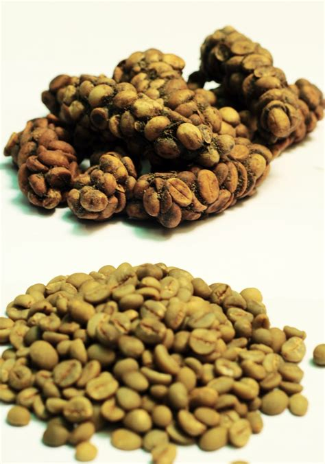 Coffee Bean Indonesia civet coffee beans kopi luwak indonesia eksportir indonesia