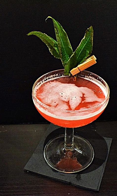 cocktail garnish the 25 best ideas about cocktail garnish on pinterest