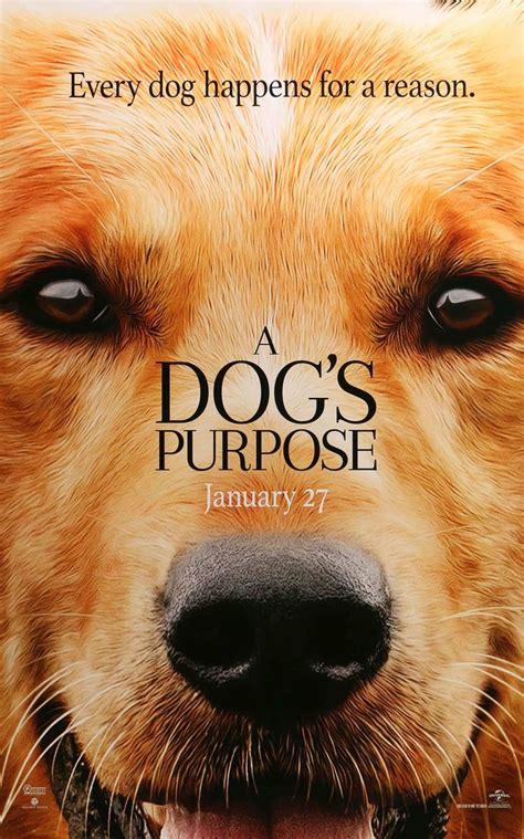 se filmer a dog s purpose 25 b 228 sta 2017 movies id 233 erna p 229 pinterest stephen kings