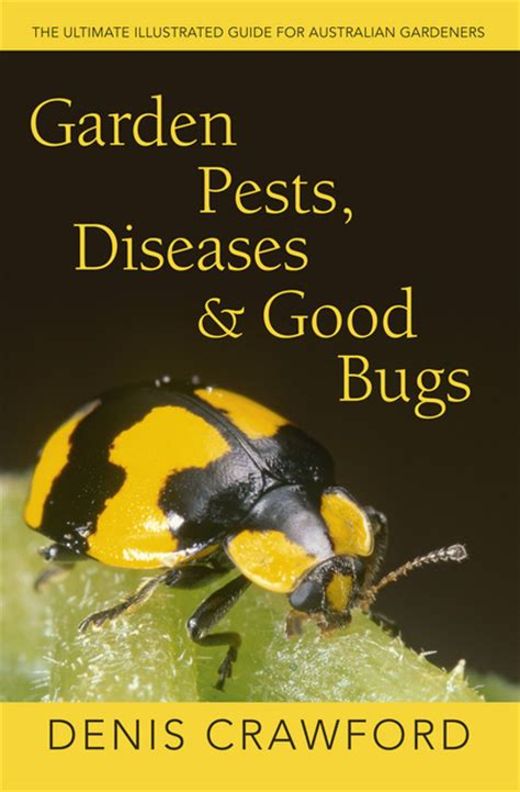 garden insects of america the ultimate guide to backyard bugs books garden pests diseases bugs the ultimate