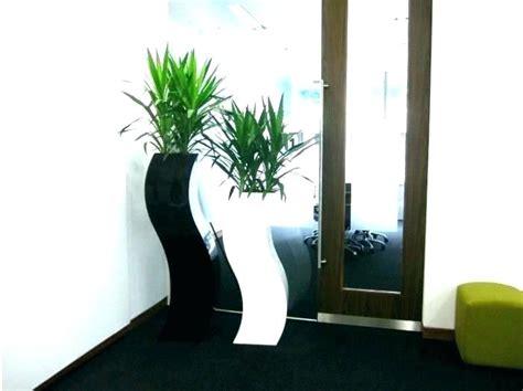 tall plant stand indoor plantoburocom