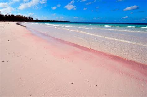 beaches with pink sand panoramio photo of bahamas eleuthera island pink sand beach