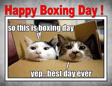 tuesday 26 12 2017 it s the annual boxing day bonanza
