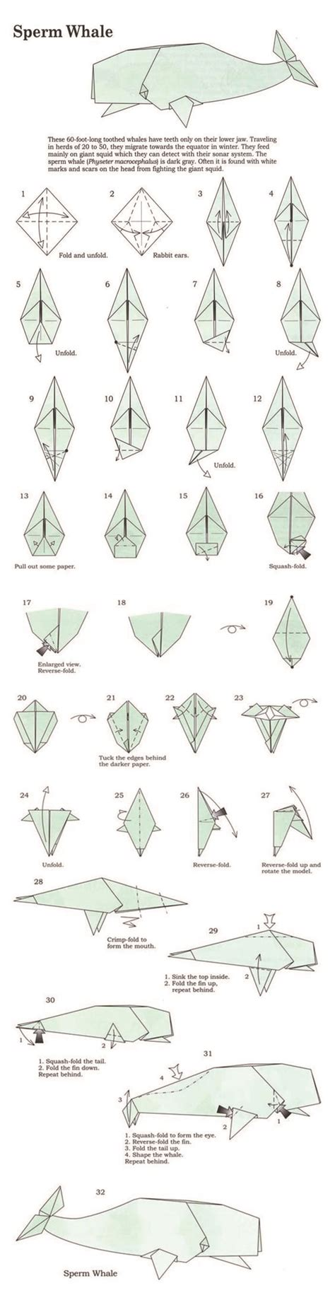 origami whale tutorial origami and whales on pinterest