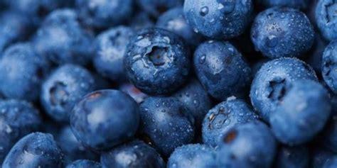 Obat Herbal Berries 6 unvaluableheart