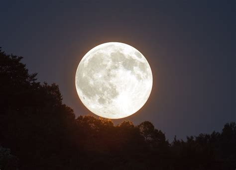 Light Up Moon by Newsport Daily Supermoon To Light Up Port Douglas Sky Tonight